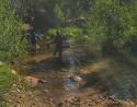 Lander-Sinks-Brewers-Trail-061818-03