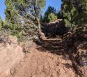 091421-jbr-flowin-johnny-trail-4