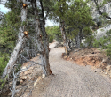 091521-jbr-flowin-johnny-trail-06