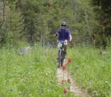 cache-game-mtb-trail-snow-king