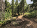 2019-pole-mountain-trail-project-aspen-trail-01