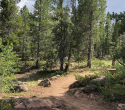 2019-pole-mountain-trail-project-aspen-trail-02