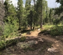 2019-pole-mountain-trail-project-aspen-trail-01