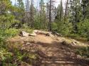090719-Pole-Mountain-Aspen-Trail-01
