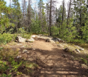 090719-Pole-Mountain-Aspen-Trail-01