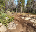 090719-Pole-Mountain-Aspen-Trail-02