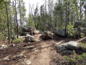 090719-Pole-Mountain-Aspen-Trail-04