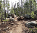 090719-Pole-Mountain-Aspen-Trail-04