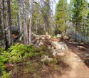 090719-Pole-Mountain-Aspen-Trail-05