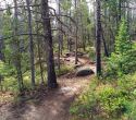 090719-Pole-Mountain-Aspen-Trail-06