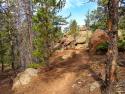 090719-Pole-Mountain-Aspen-Trail-08