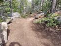 090719-Pole-Mountain-Aspen-Trail-09