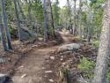 090719-Pole-Mountain-Aspen-Trail-10