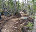 090719-Pole-Mountain-Aspen-Trail-10