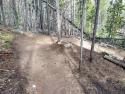 090719-Pole-Mountain-Aspen-Trail-11