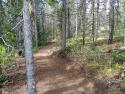 090719-Pole-Mountain-Aspen-Trail-13