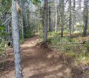 090719-Pole-Mountain-Aspen-Trail-13