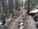 090719-Pole-Mountain-Aspen-Trail-16