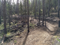 090719-Pole-Mountain-Aspen-Trail-17