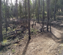 090719-Pole-Mountain-Aspen-Trail-17