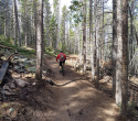 090719-Pole-Mountain-Aspen-Trail-18