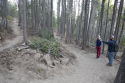 100520-pole-mountain-trail-project-2020-02