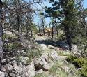 10-Chunky-corridor-of-future-trail