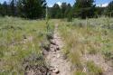 05-071918 Pole Mountain Phase 2 Trail Photos