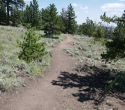 03-071918 Pole Mountain Phase 2 Trail Photos