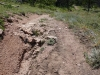 07-071918 Pole Mountain Phase 2 Trail Photos