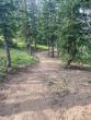 073021-togwotee-pass-cdt-trail-04