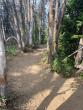 073021-togwotee-pass-cdt-trail-05
