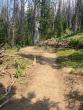 073021-togwotee-pass-cdt-trail-08