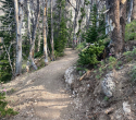 073021-togwotee-pass-cdt-trail-02
