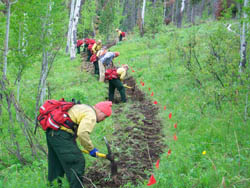 Game Creek trail crew working-small